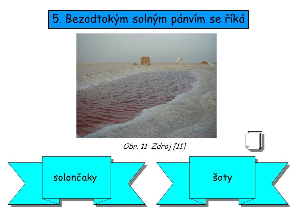 5. Bezodtokým solným pánvím se říká šotysolončaky Obr. 11: Zdroj [11]
