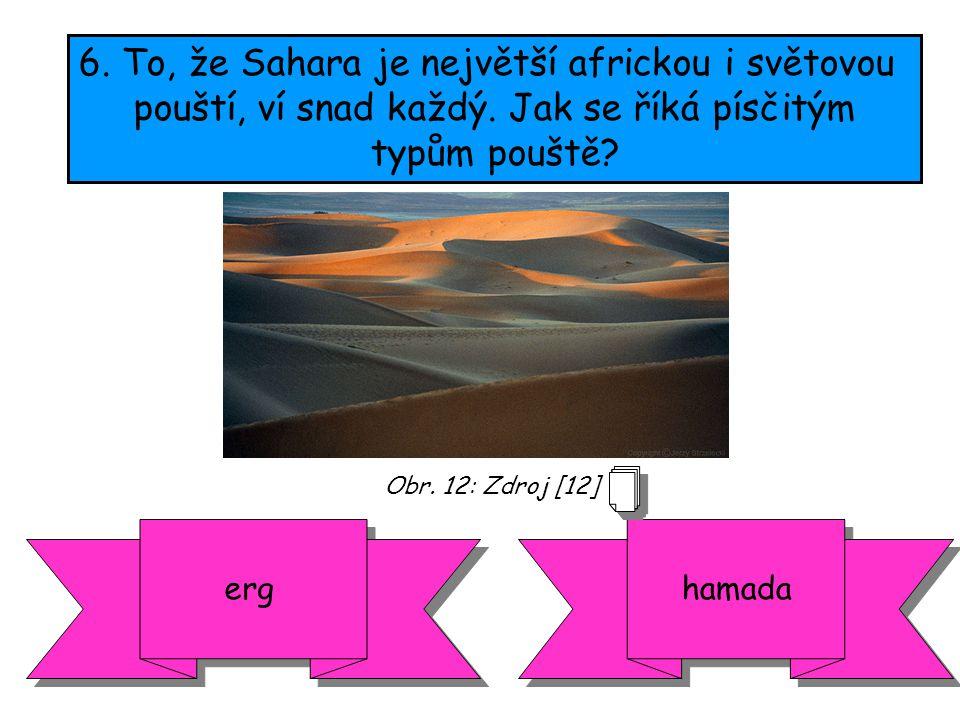 6.To, že Sahara je největší africkou i světovou pouští, ví snad každý.