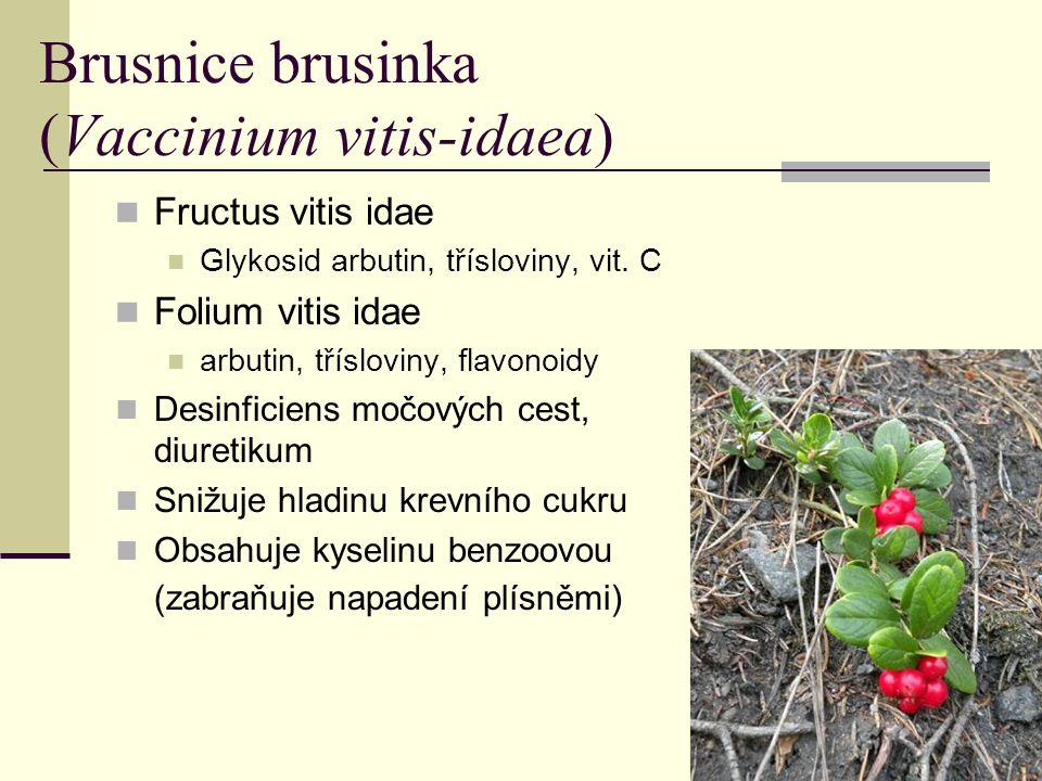 Brusnice brusinka (Vaccinium vitis-idaea) Fructus vitis idae Glykosid arbutin, třísloviny, vit. C Folium vitis idae arbutin, třísloviny, flavonoidy De
