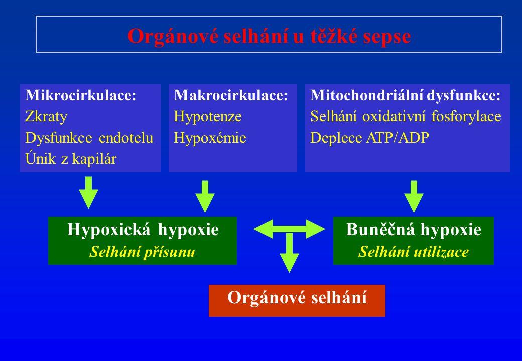 Orgánové selhání u těžké sepse Mikrocirkulace: Zkraty Dysfunkce endotelu Únik z kapilár Makrocirkulace: Hypotenze Hypoxémie Mitochondriální dysfunkce: