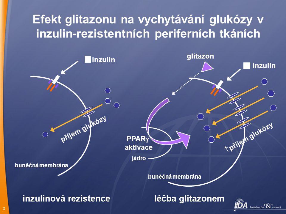 3 Efekt glitazonu na vychytávání glukózy v inzulin-rezistentních periferních tkáních buněčná membrána inzulin glitazon inzulinová rezistence léčba glitazonem jádro příjem glukózy  příjem glukózy PPAR  aktivace buněčná membrána