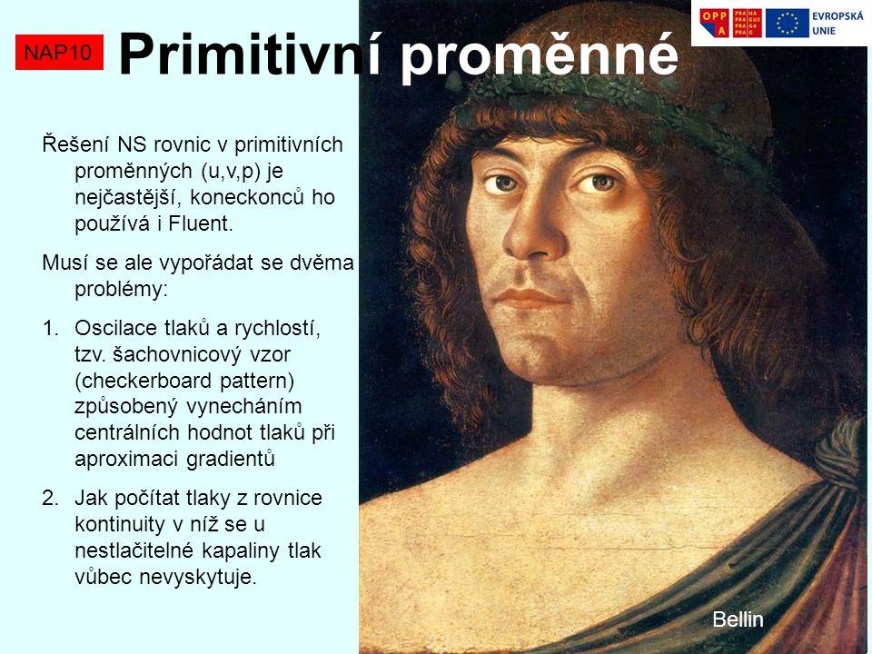 NAP10 Řešení NS rovnic v primitivních proměnných (u,v,p) je nejčastější, koneckonců ho používá i Fluent. Musí se ale vypořádat se dvěma problémy: 1.Os