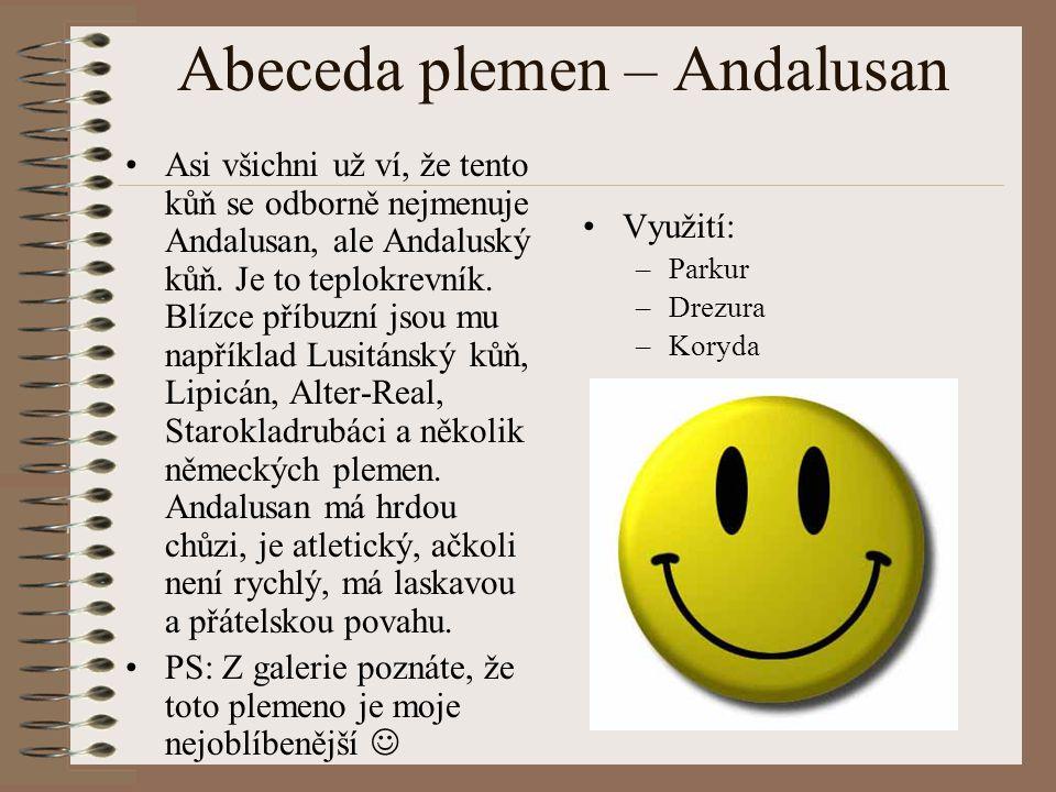 Abeceda plemen – Andalusan Asi všichni už ví, že tento kůň se odborně nejmenuje Andalusan, ale Andaluský kůň. Je to teplokrevník. Blízce příbuzní jsou