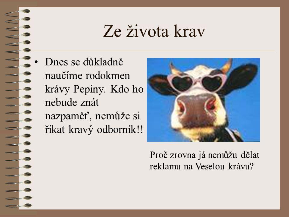 Ze života krav Dnes se důkladně naučíme rodokmen krávy Pepiny. Kdo ho nebude znát nazpaměť, nemůže si říkat kravý odborník!! Proč zrovna já nemůžu děl