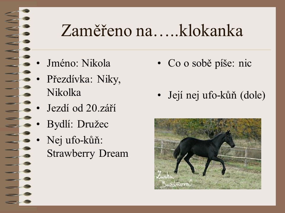 Zaměřeno na…..klokanka Jméno: Nikola Přezdívka: Niky, Nikolka Jezdí od 20.září Bydlí: Družec Nej ufo-kůň: Strawberry Dream Co o sobě píše: nic Její ne