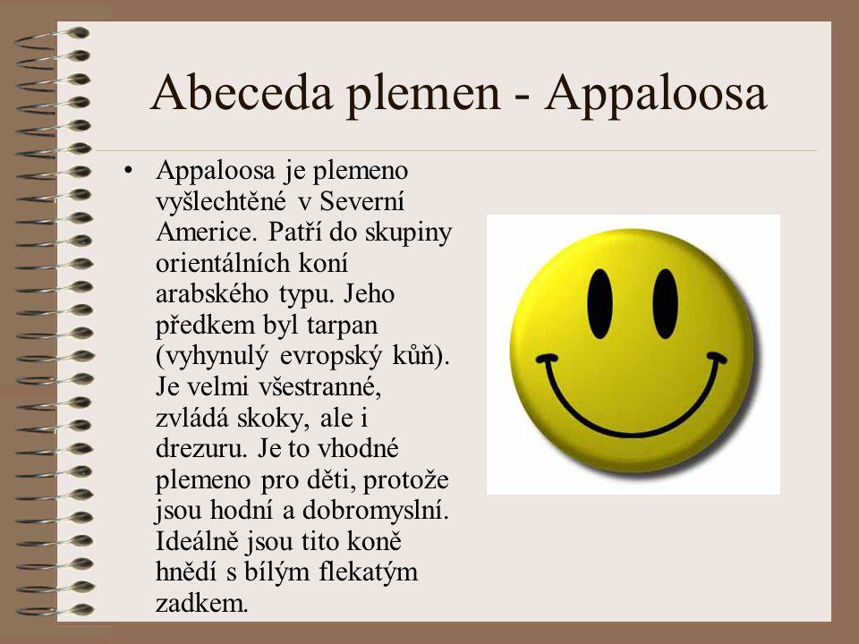 Abeceda plemen - Appaloosa Appaloosa je plemeno vyšlechtěné v Severní Americe. Patří do skupiny orientálních koní arabského typu. Jeho předkem byl tar
