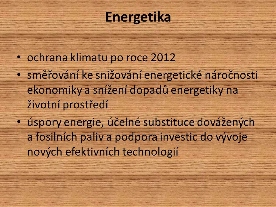 Energetika ochrana klimatu po roce 2012 směřování ke snižování energetické náročnosti ekonomiky a snížení dopadů energetiky na životní prostředí úspory energie, účelné substituce dovážených a fosilních paliv a podpora investic do vývoje nových efektivních technologií