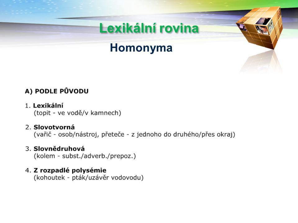 Lexikální rovina Homonyma