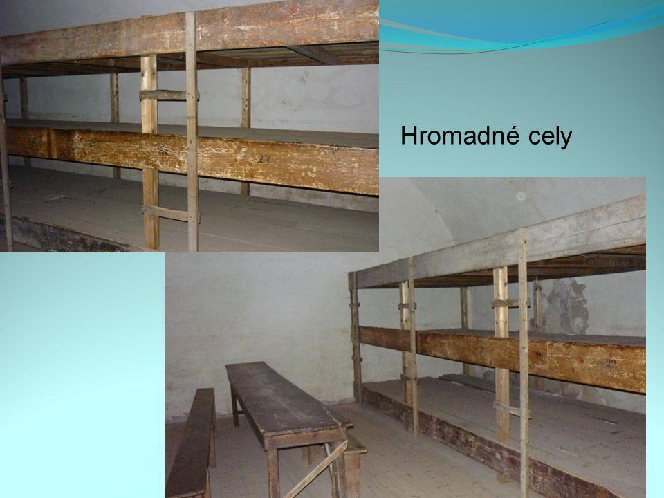 Hromadné cely