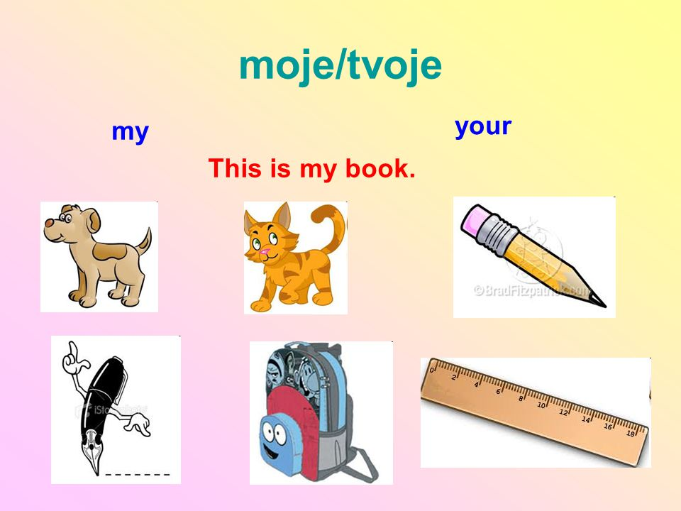 moje/tvoje my your This is my book.