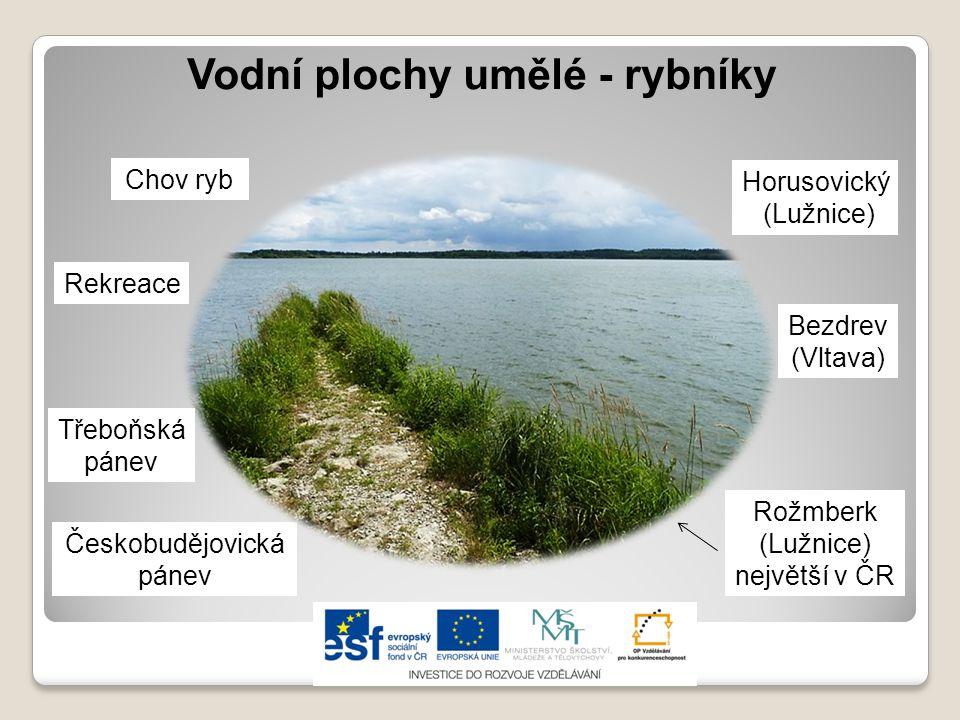 Vodní plochy přírodní - jezera Ledovcová na Šumavě ▪Černé ▪Čertovo ▪Plešné ▪Laka Výskyt v ČR minimální.