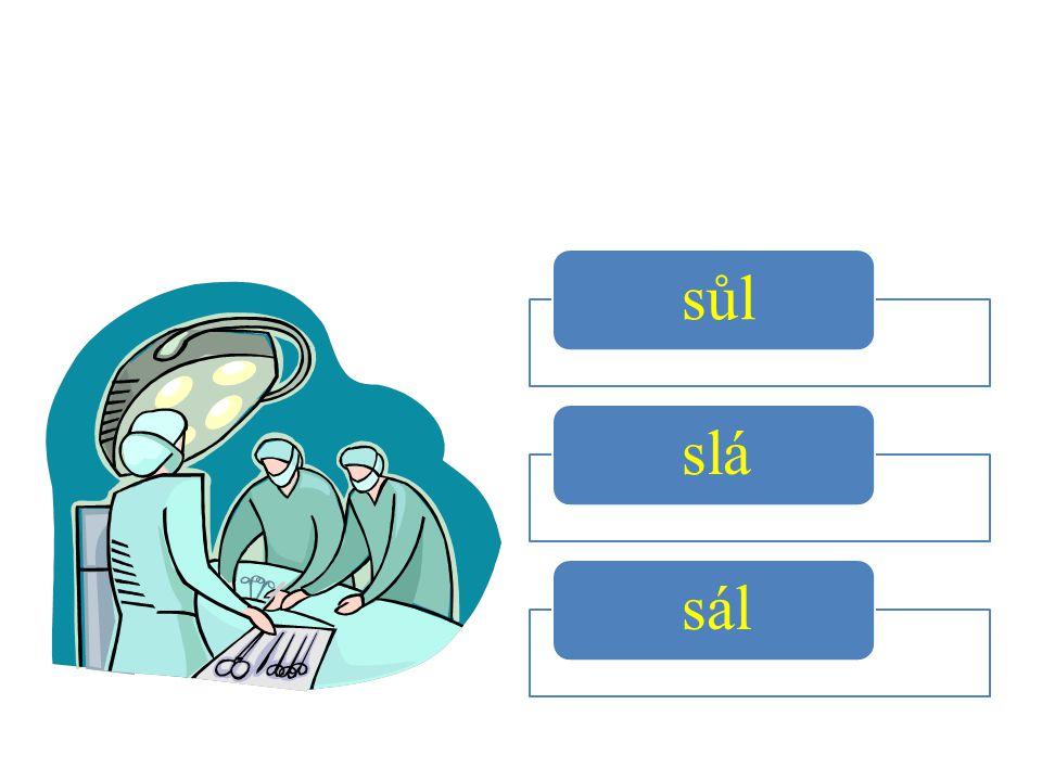 sůl slá sál