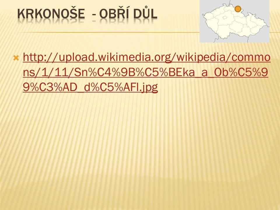  http://upload.wikimedia.org/wikipedia/commo ns/1/11/Sn%C4%9B%C5%BEka_a_Ob%C5%9 9%C3%AD_d%C5%AFl.jpg http://upload.wikimedia.org/wikipedia/commo ns/1/11/Sn%C4%9B%C5%BEka_a_Ob%C5%9 9%C3%AD_d%C5%AFl.jpg