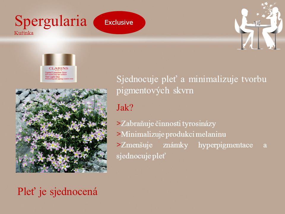 Spergularia Kuřinka Exclusive Sjednocuje pleť a minimalizuje tvorbu pigmentových skvrn Jak.