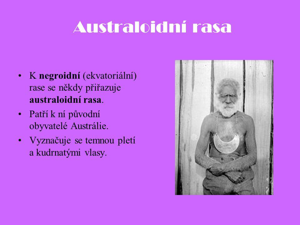 Australoidní rasa K negroidní (ekvatoriální) rase se někdy přiřazuje australoidní rasa. Patří k ní původní obyvatelé Austrálie. Vyznačuje se temnou pl