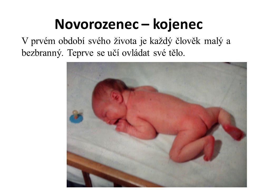 Novorozenec – kojenec V prvém období svého života je každý člověk malý a bezbranný. Teprve se učí ovládat své tělo.