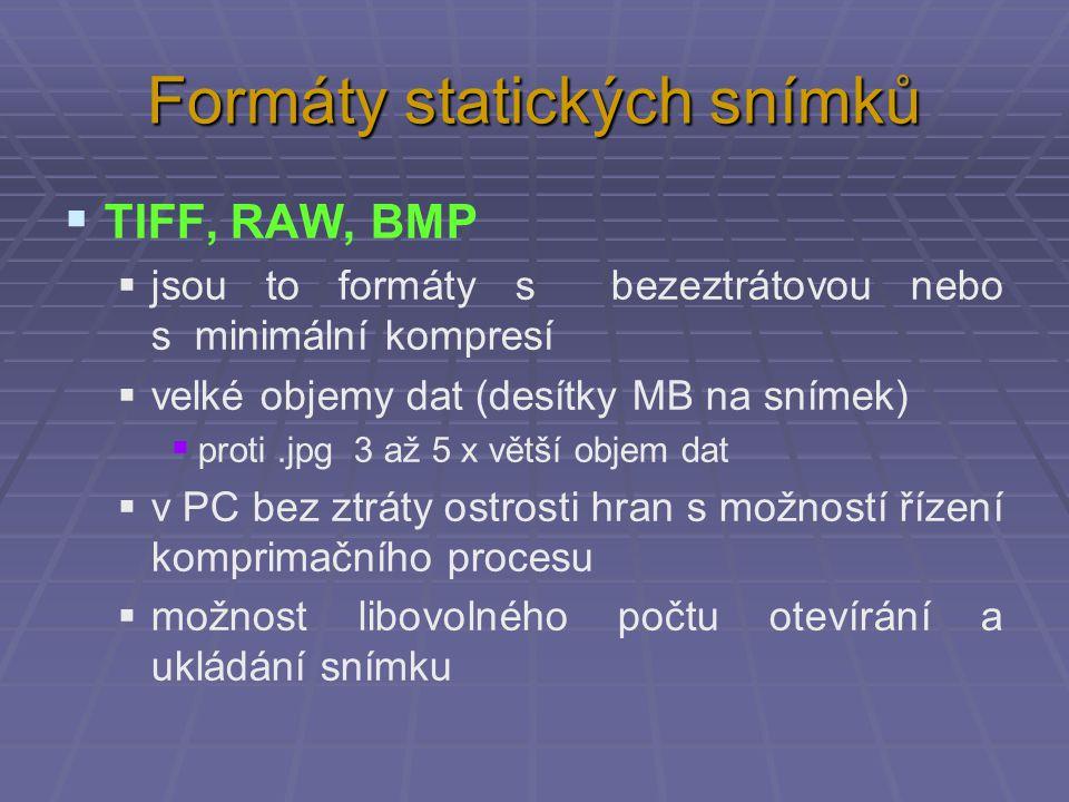 Formáty statických snímků  TIFF, RAW, BMP  jsou to formáty s bezeztrátovou nebo s minimální kompresí  velké objemy dat (desítky MB na snímek)  pro