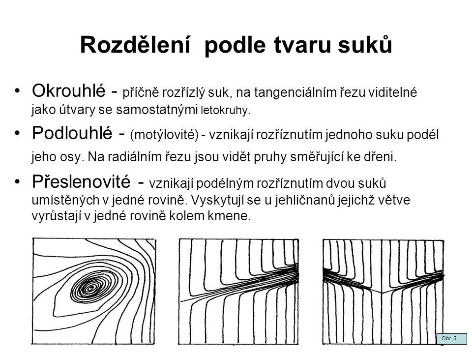 Rozdělení podle tvaru suků Okrouhlé - příčně rozřízlý suk, na tangenciálním řezu viditelné jako útvary se samostatnými letokruhy.