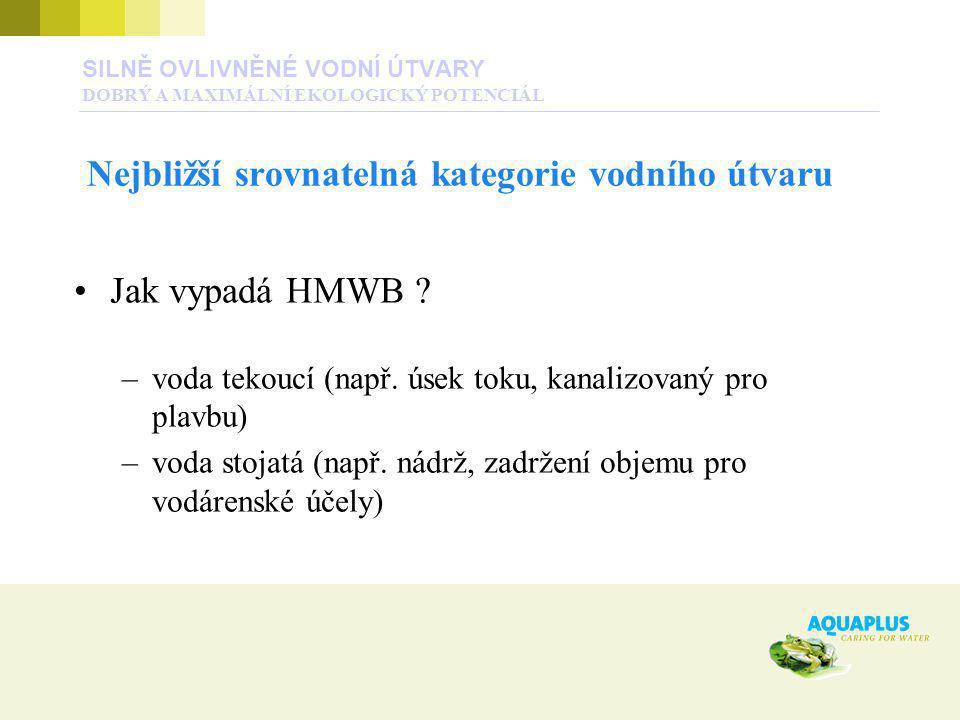 Jak vypadá HMWB ? –voda tekoucí (např. úsek toku, kanalizovaný pro plavbu) –voda stojatá (např. nádrž, zadržení objemu pro vodárenské účely) SILNĚ OVL