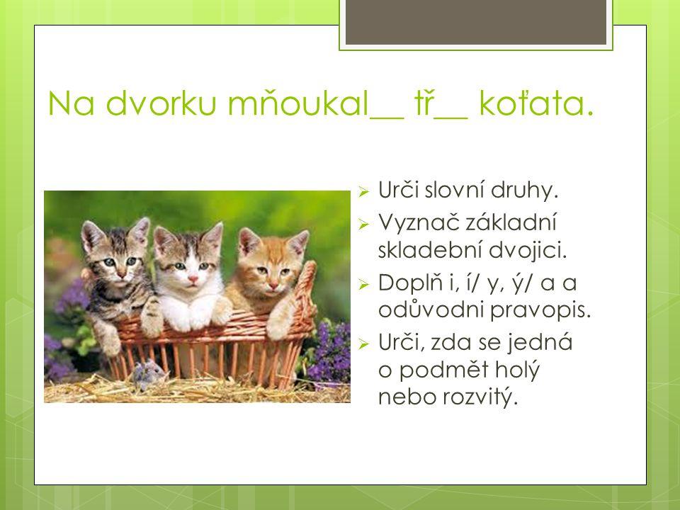 Na dvorku mňoukal__ tř__ koťata.  Urči slovní druhy.  Vyznač základní skladební dvojici.  Doplň i, í/ y, ý/ a a odůvodni pravopis.  Urči, zda se j
