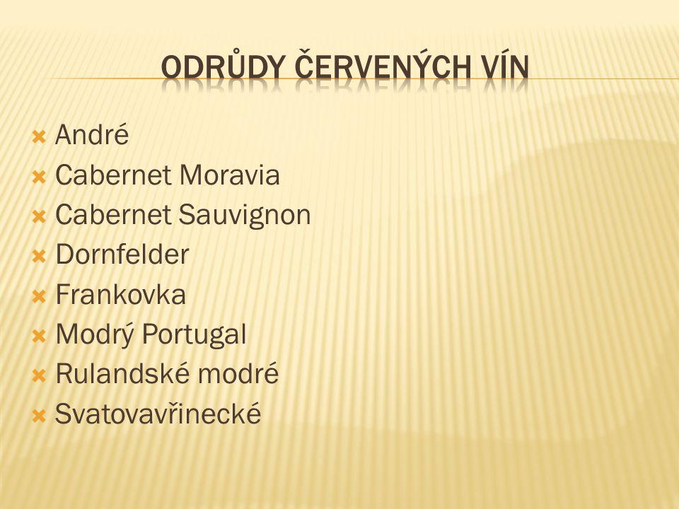  André  Cabernet Moravia  Cabernet Sauvignon  Dornfelder  Frankovka  Modrý Portugal  Rulandské modré  Svatovavřinecké