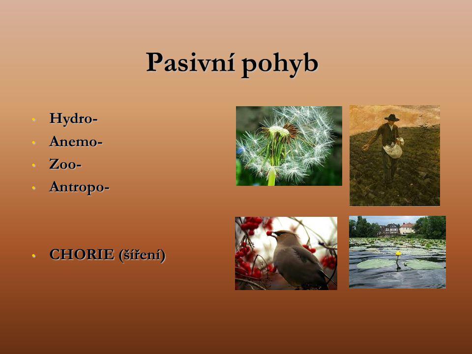 Pasivní pohyb Hydro- Hydro- Anemo- Anemo- Zoo- Zoo- Antropo- Antropo- CHORIE (šíření) CHORIE (šíření)