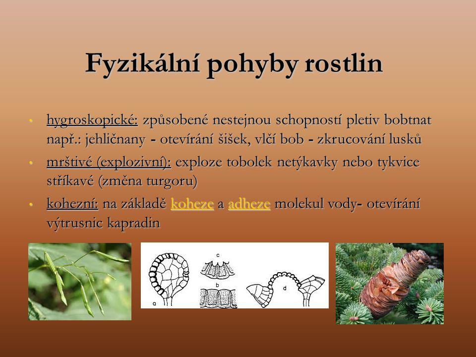 Fyzikální pohyby rostlin hygroskopické: způsobené nestejnou schopností pletiv bobtnat např.: jehličnany - otevírání šišek, vlčí bob - zkrucování lusků