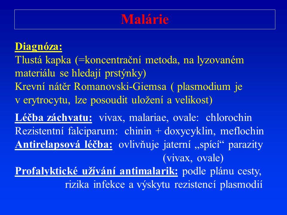 Malárie Diagnóza: Tlustá kapka (=koncentrační metoda, na lyzovaném materiálu se hledají prstýnky) Krevní nátěr Romanovski-Giemsa ( plasmodium je v ery