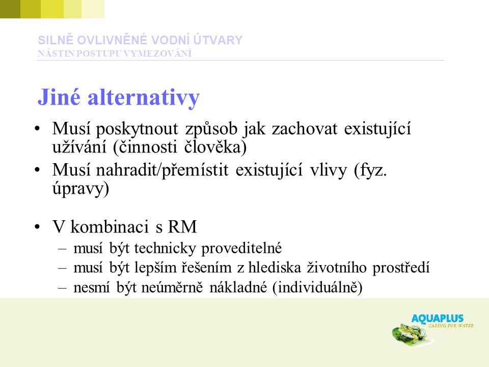 SILNĚ OVLIVNĚNÉ VODNÍ ÚTVARY NÁSTIN POSTUPU VYMEZOVÁNÍ Jiné alternativy Musí poskytnout způsob jak zachovat existující užívání (činnosti člověka) Musí nahradit/přemístit existující vlivy (fyz.