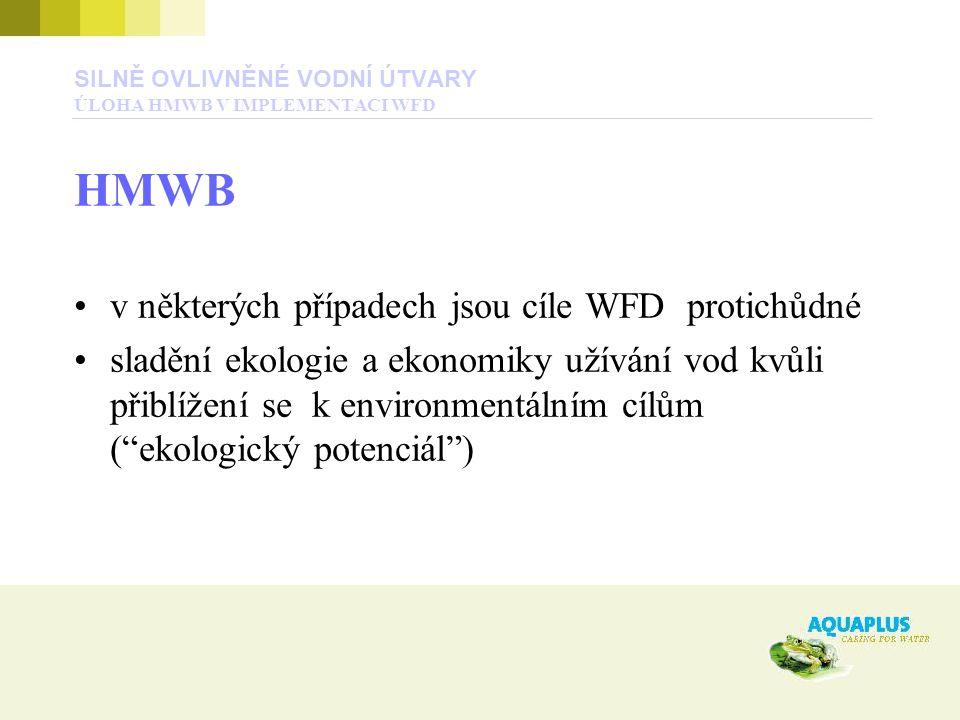 SILNĚ OVLIVNĚNÉ VODNÍ ÚTVARY ÚLOHA HMWB V IMPLEMENTACI WFD HMWB v některých případech jsou cíle WFD protichůdné sladění ekologie a ekonomiky užívání vod kvůli přiblížení se k environmentálním cílům ( ekologický potenciál )