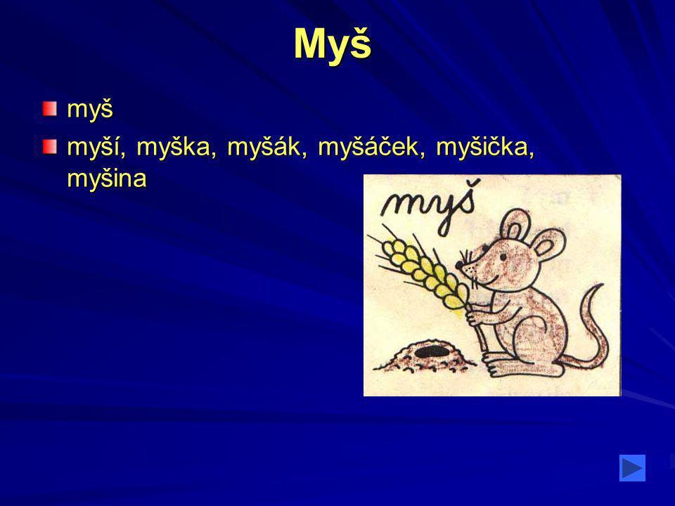Myšmyš myší, myška, myšák, myšáček, myšička, myšina