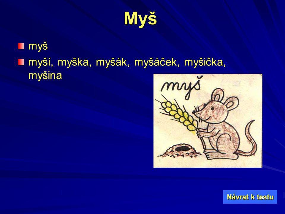 Myšmyš myší, myška, myšák, myšáček, myšička, myšina Návrat k testu Návrat k testu