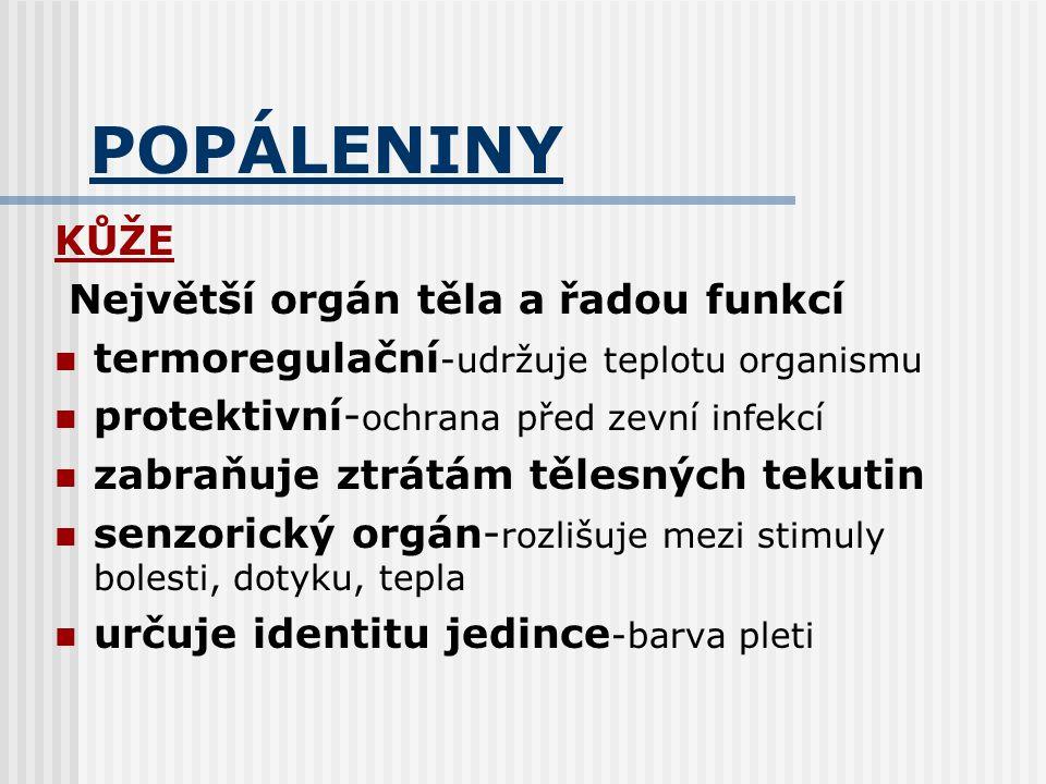 POPÁLENINY KŮŽE Největší orgán těla a řadou funkcí termoregulační -udržuje teplotu organismu protektivní- ochrana před zevní infekcí zabraňuje ztrátám