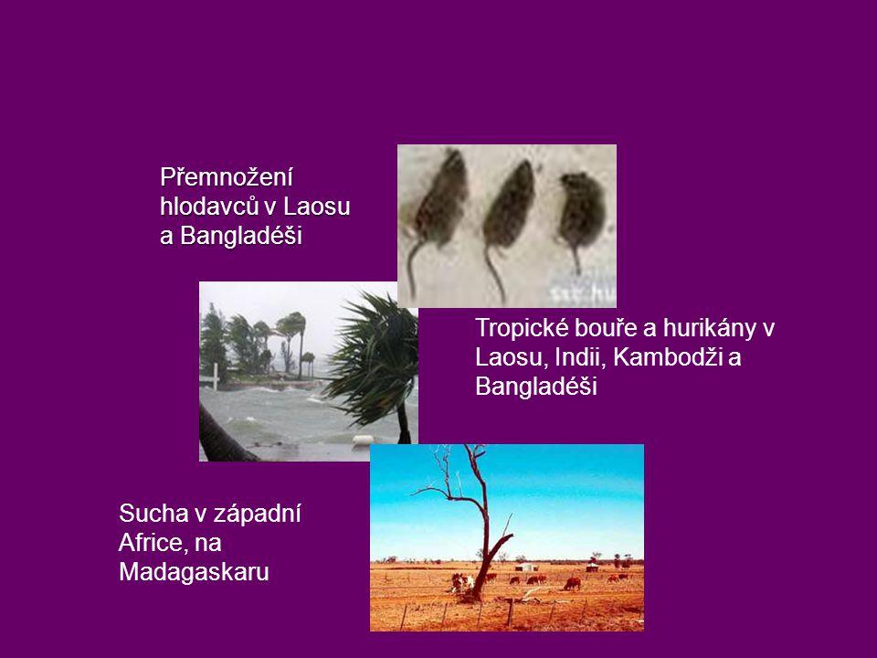 Tropické bouře a hurikány v Laosu, Indii, Kambodži a Bangladéši Sucha v západní Africe, na Madagaskaru Přemnožení hlodavců v Laosu a Bangladéši