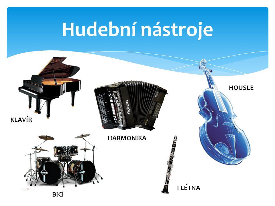 Hudební nástroje KLAVÍR BICÍ HOUSLE HARMONIKA FLÉTNA