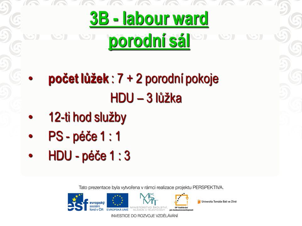 3B - labour ward porodní sál počet lůžek : 7 + 2 porodní pokoje počet lůžek : 7 + 2 porodní pokoje HDU – 3 lůžka HDU – 3 lůžka 12-ti hod služby 12-ti hod služby PS - péče 1 : 1 PS - péče 1 : 1 HDU - péče 1 : 3 HDU - péče 1 : 3