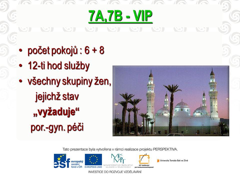 "7A,7B - VIP počet pokojů : 6 + 8 počet pokojů : 6 + 8 12-ti hod služby 12-ti hod služby všechny skupiny žen, všechny skupiny žen, jejichž stav jejichž stav ""vyžaduje ""vyžaduje por.-gyn."
