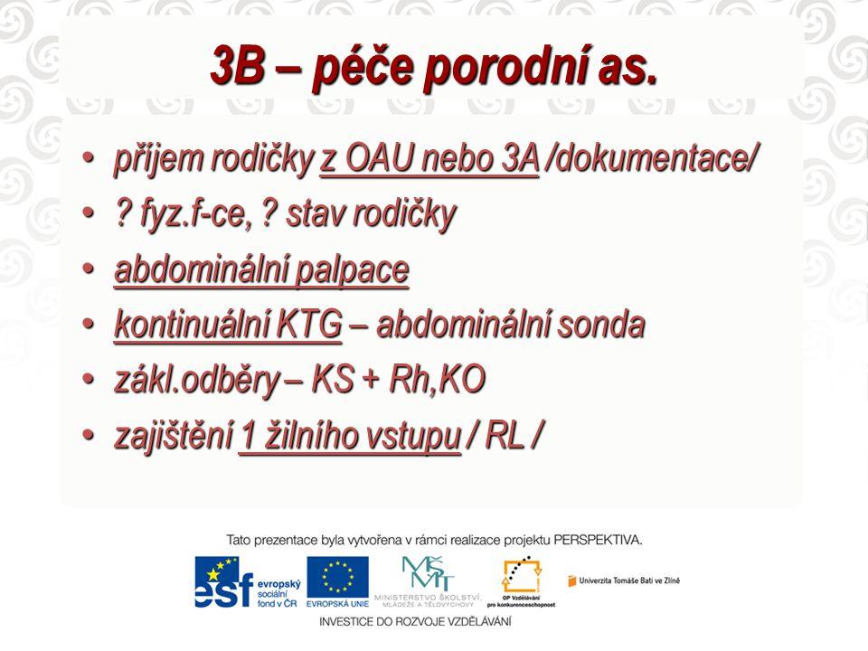 3B – péče porodní as.
