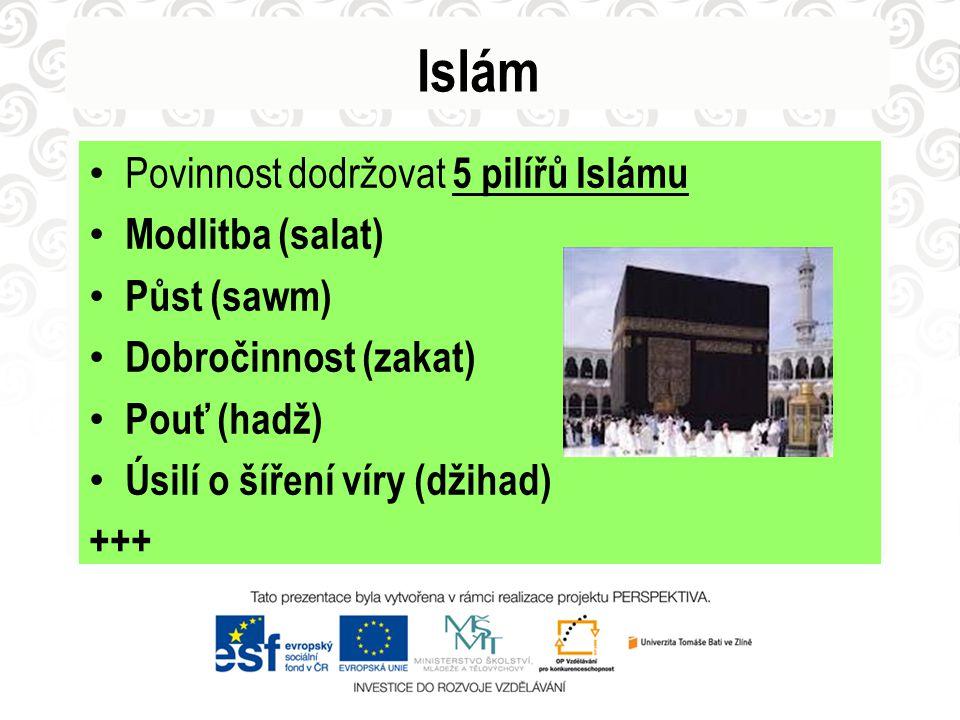 Islám Povinnost dodržovat 5 pilířů Islámu Modlitba (salat) Půst (sawm) Dobročinnost (zakat) Pouť (hadž) Úsilí o šíření víry (džihad) +++