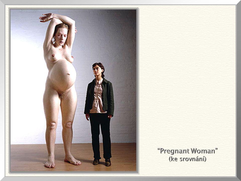 Pregnant Woman (ke srovnání)