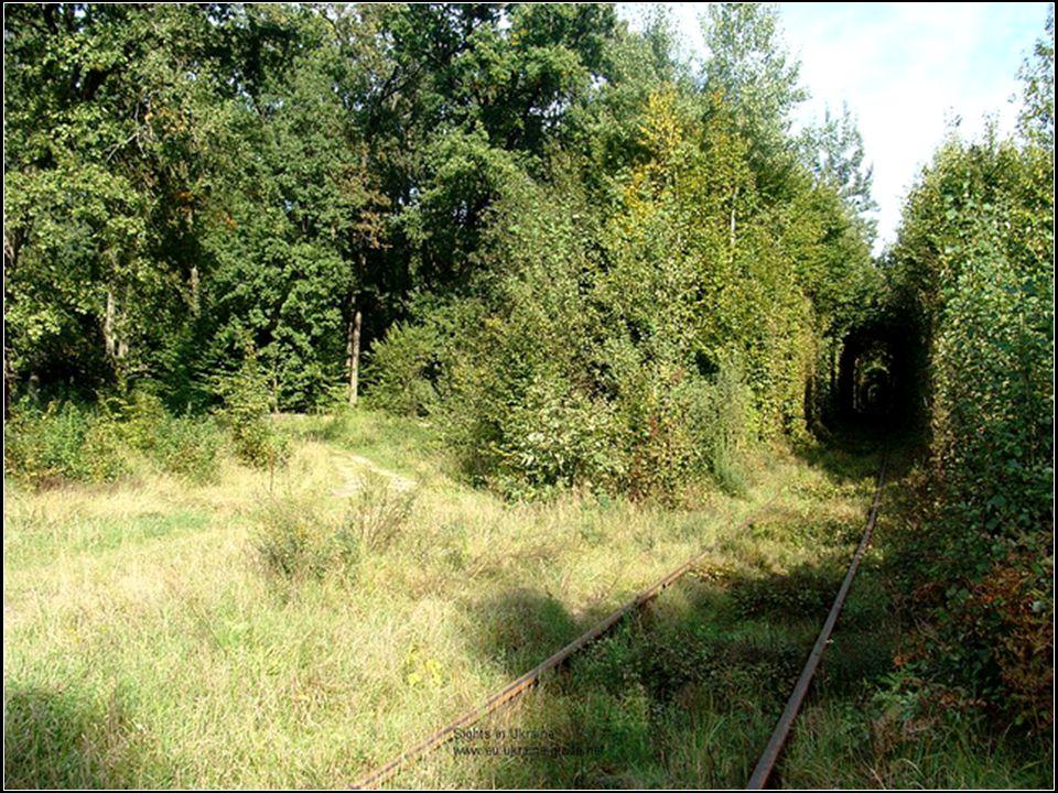 4. Lesní pasáž (Ukraina)