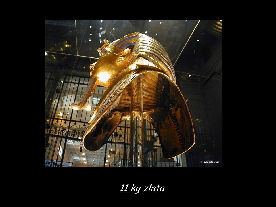 11 kg zlata