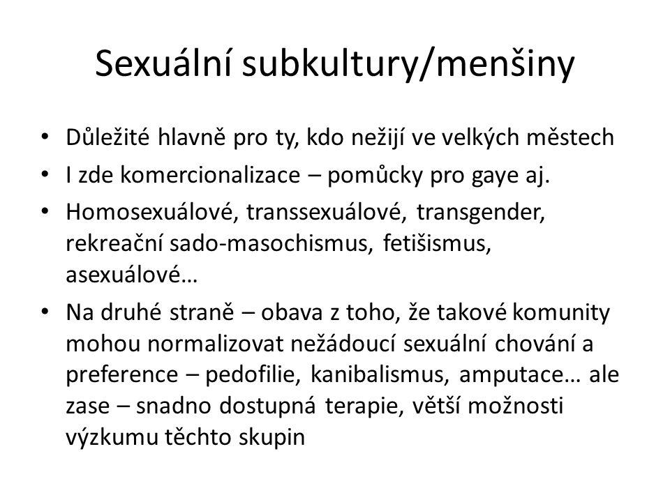 Sexuální subkultury/menšiny Důležité hlavně pro ty, kdo nežijí ve velkých městech I zde komercionalizace – pomůcky pro gaye aj. Homosexuálové, transse
