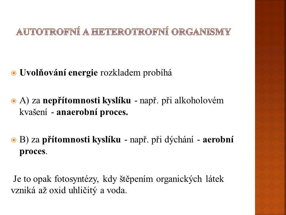  Uvolňování energie rozkladem probíhá  A) za nepřítomnosti kyslíku - např. při alkoholovém kvašení - anaerobní proces.  B) za přítomnosti kyslíku -