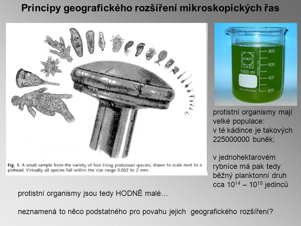 Principy geografického rozšíření mikroskopických řas protistní organismy jsou tedy HODNĚ malé… neznamená to něco podstatného pro povahu jejich geografického rozšíření.
