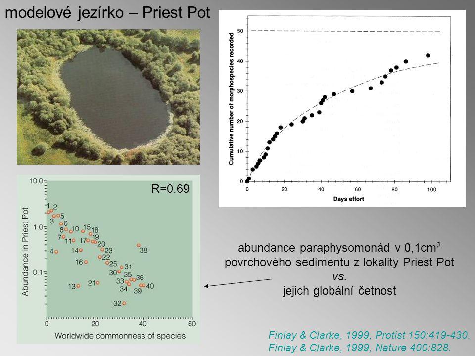 abundance paraphysomonád v 0,1cm 2 povrchového sedimentu z lokality Priest Pot vs.