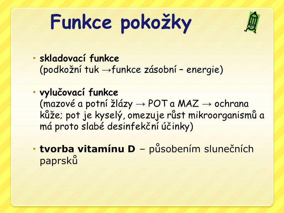 Samostatná práce Číst učebnici str.90 -91 Opsat zelený rámeček ze str.