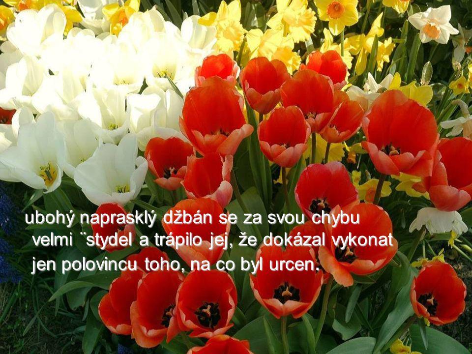 Mějte krásny den a nezapomínejte vychutnávat vůni a krásu květín na vaší straně chodníku.