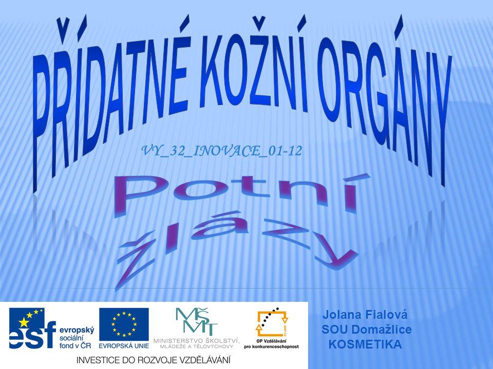VY_32_INOVACE_01-12 Jolana Fialová SOU Domažlice KOSMETIKA