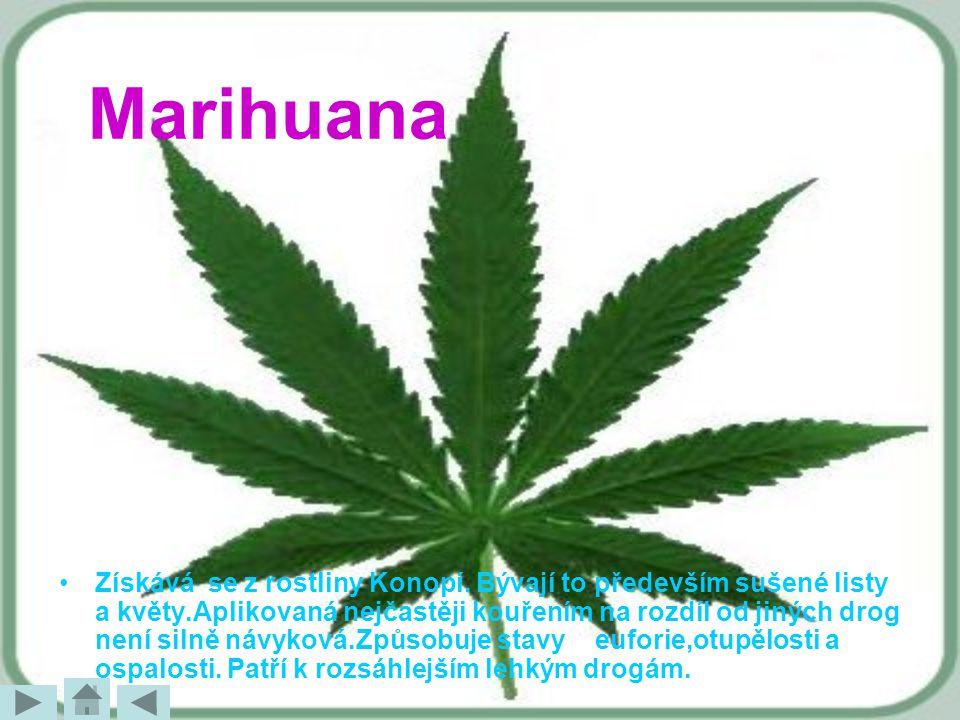 Marihuana Získává se z rostliny Konopí. Bývají to především sušené listy a květy.Aplikovaná nejčastěji kouřením na rozdíl od jiných drog není silně ná